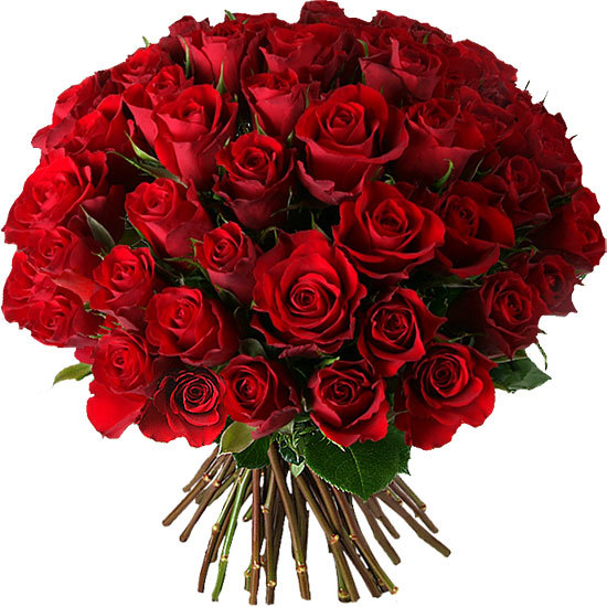 roses-rouges-st-valentin-550x550-18420